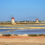 some of the wind mills of the salt pans