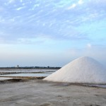 a mountain of freshly harvested salt
