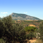 The Mount of Bonifato dominating Alcamo