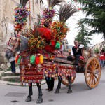 What a beautiful sicilian cart !