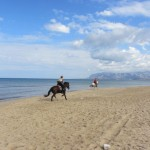A great galop on the beach ! The best!