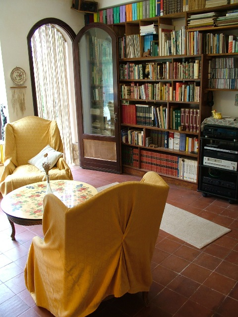 The library of the living room