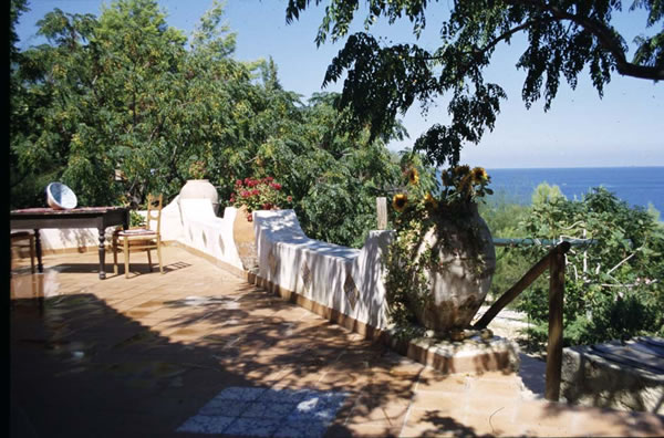 The terrace surrounded with mediterranean plants